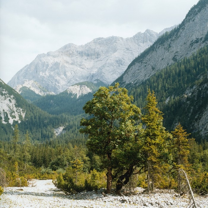 Alpenquerung